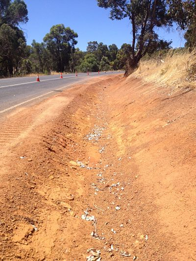 Concrete Canvas Ditch Lining On The Collie Williams